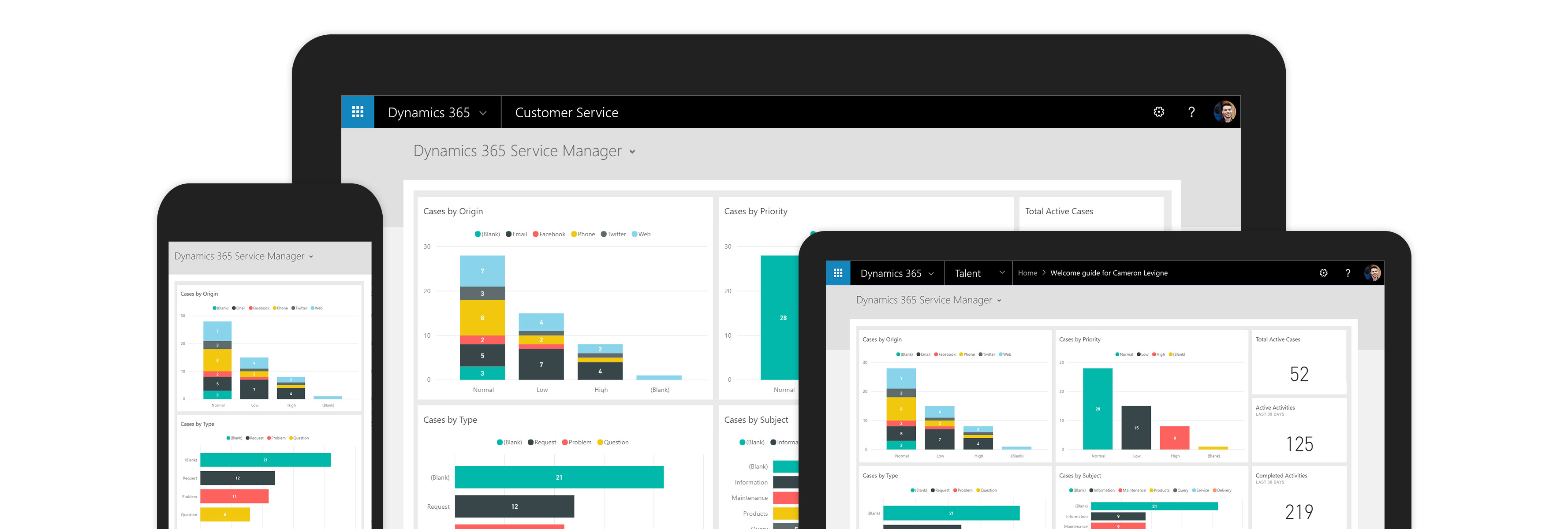 customer service microsoft dynamics 365
